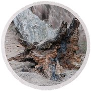 Dead Wood In Color Round Beach Towel