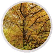 Deciduous Forest In The Autumn Round Beach Towel