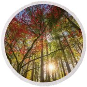 Decorated By Japanese Maple Round Beach Towel