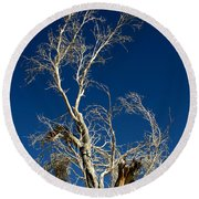 Deep Blue White Tree Round Beach Towel