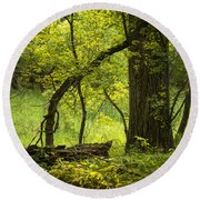 Deep Forest Scenic Round Beach Towel