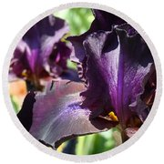 Deep Purple Irises Dark Purple Irises Summer Garden Art Prints Round Beach Towel