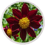 Deep Red And Yellow Flowers Round Beach Towel