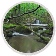 Deep Woods Stream 2 Round Beach Towel