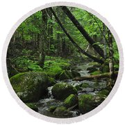 Deep Woods Stream 3 Round Beach Towel