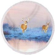 Deer At Winter Pond Round Beach Towel