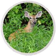 Deer Beauty II Round Beach Towel