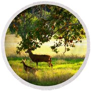 Deer In Autumn Meadow - Digital Painting Round Beach Towel