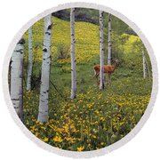 Deer In Spring Round Beach Towel