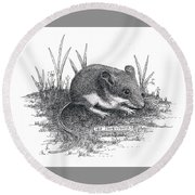 Deer Mouse Round Beach Towel