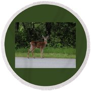 Deer On Road Round Beach Towel