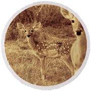 Deer Sepia V3 Round Beach Towel