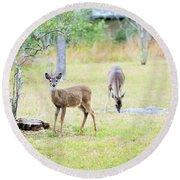 Deer18 Round Beach Towel