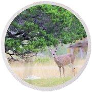 Deer21 Round Beach Towel