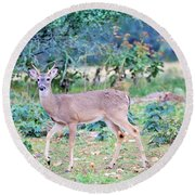 Deer42 Round Beach Towel