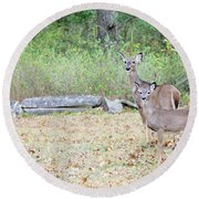 Deer47 Round Beach Towel