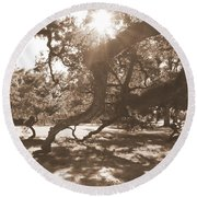 Defying Gravity In Sepia Round Beach Towel