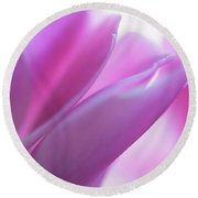Delicate Beauty Of Cyclamen Flower Round Beach Towel