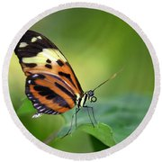 Delicate Butterfly Round Beach Towel