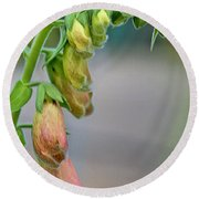 Delicate Hanging Blossom Round Beach Towel