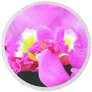 Delicate In Pink Round Beach Towel