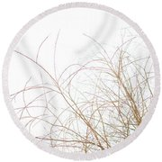 Delicate January Tree Branches Round Beach Towel