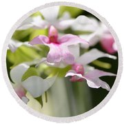 Delicate Orchids By Sharon Cummings Round Beach Towel