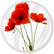 Delicate Red Poppies Vector Round Beach Towel