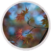 Delicate Signs Of Autumn Round Beach Towel