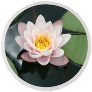 Delicate Waterlily Round Beach Towel