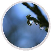 Delighted By Droplets Round Beach Towel