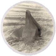 Delphin 1 Round Beach Towel