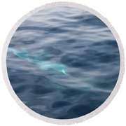 Delphin 1 The Mermaid Round Beach Towel