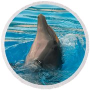 Delphin 2 Round Beach Towel