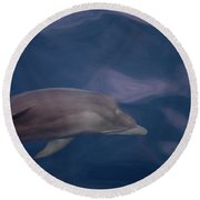 Delphin 9 Round Beach Towel