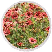 Desert Beauties Round Beach Towel