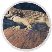 Desert Iguana Mural Round Beach Towel