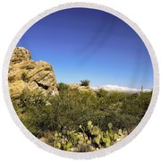 desert plants in Saguaro National Park Round Beach Towel