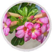 Desert Rose Or Chuanchom Dthb2106 Round Beach Towel