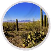 Desert Spring Round Beach Towel by Chad Dutson