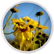 Desert Sunflower Variations Round Beach Towel