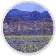 Desert Wildflowers, Death Valley Round Beach Towel