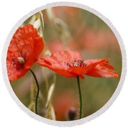 Detail Of The Corn Poppy Round Beach Towel