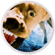 Devil Dog Underwater Round Beach Towel