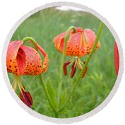 Dew Covered Tiger Lilies Round Beach Towel