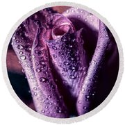 Dew Drops And Purple Rose Round Beach Towel