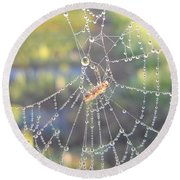 Dew Drops On A Spider Web Round Beach Towel