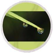 Dew Drops On Leaf Round Beach Towel