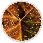 Dew Drops Round Beach Towel