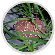 Dew It At The Creek Round Beach Towel